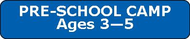 preschool camp button